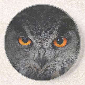 The Evil Eyes. ( Eagle Owl, Bubo Bubo) Sandstone Coaster