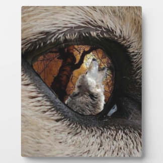 The Eye of The Wolf Display Plaque
