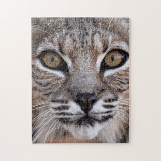 The Eyes Of A Bobcat Puzzles
