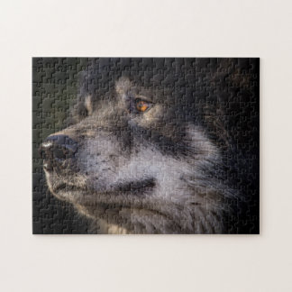 The Eyes of the Wolf Puzzle
