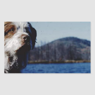 "The famous ""Pesky"" from Kellum Pond Rectangular Sticker"