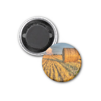 The farm and the face in the cloud fridge magnet