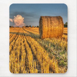 The farm and the face in the cloud mouse pads