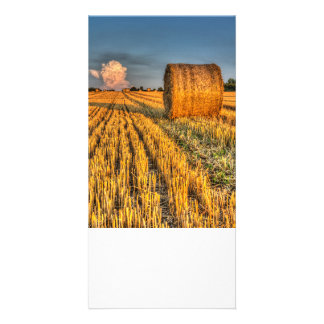 The farm and the face in the cloud photo card template