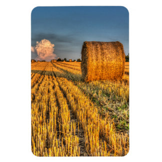 The farm and the face in the cloud vinyl magnet