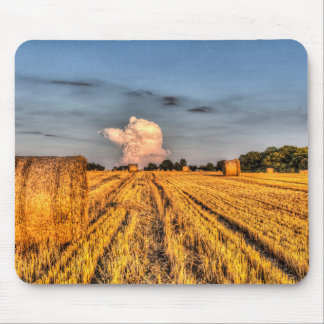 The farm in summer mouse mats