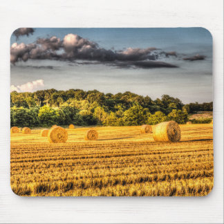 The Farm In Summer Mousemats