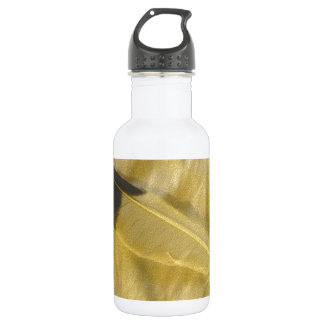 The Feather 532 Ml Water Bottle