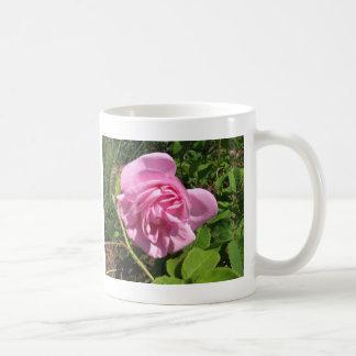 THE FIRST SENIOR PROM ROSE ON MY ROSEBUSH COFFEE MUG