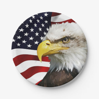 The flag of america with eagle 7 inch paper plate
