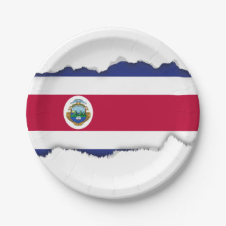 The Flag of Costa Rican 7 Inch Paper Plate