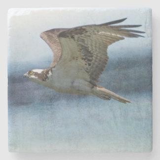 The Flight of the Osprey No. 1 Coaster