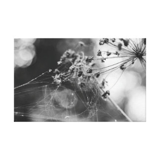 The flower in a web canvas print