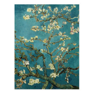 The flower the branch of the almond which blooms postcard
