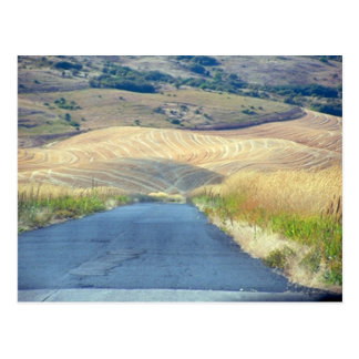 The Foothills of Steptoe Butte Postcard