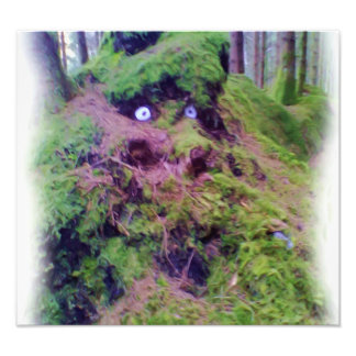 The Forest Troll Photographic Print