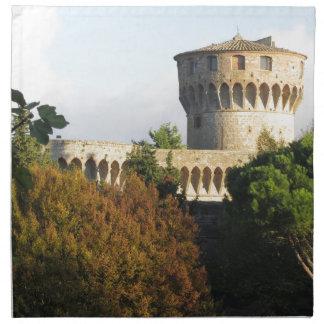 The Fortezza Medicea of Volterra, Tuscany, Italy Napkin