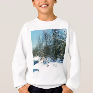 The four seasons sweatshirt