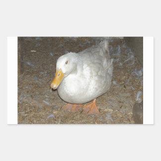 The freindliest duck on earth rectangular sticker
