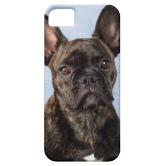 The French Bulldog Case For The iPhone 5