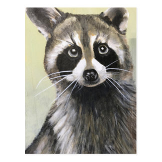 The Friendly Raccoon Postcard