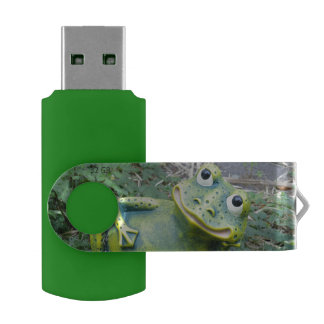 The frog USB flash drive