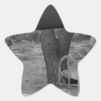 The Future Star Sticker