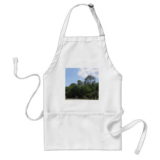 The Gateway Aprons