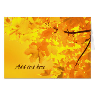 The Gold of Autumn Greeting Card