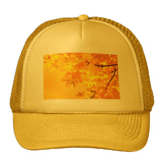 The Gold of Autumn Trucker Hats