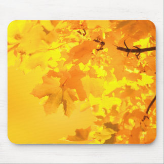 The Gold of Autumn Mouse Pad