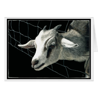 """The Grass is Always Greener"" - Goat Card"