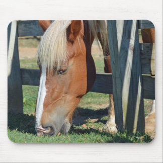 The Grass Is Greener On The Other Side Horse Mouse Pad