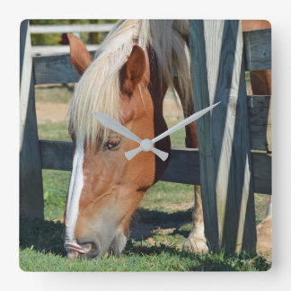 The Grass Is Greener On The Other Side Horse Square Wall Clock