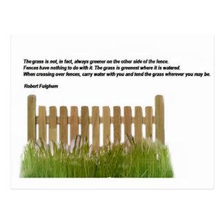 The grass postcard