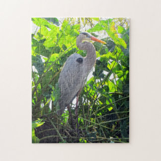 The Great Blue Heron Puzzle