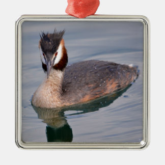 The Great Crested Grebe on water Metal Ornament