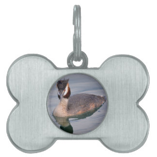 The Great Crested Grebe on water Pet Name Tag