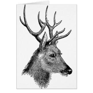The great deer buck greeting card