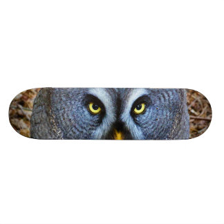 The Great Grey Owl Strix Nebulosa Lapland Owl Skate Decks