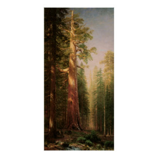 The Great Trees, by Albert Bierstadt Poster