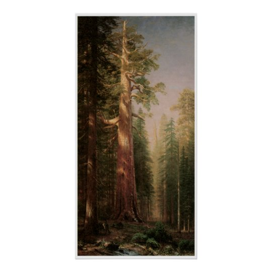The Great Trees Poster