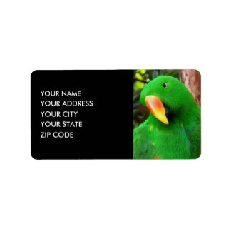 """""""The Green Orator"""" Eclectus Parrot Address Label"""