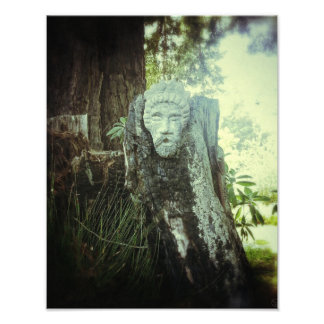 The Guardian of the Woods 11 x 14 Photo Print