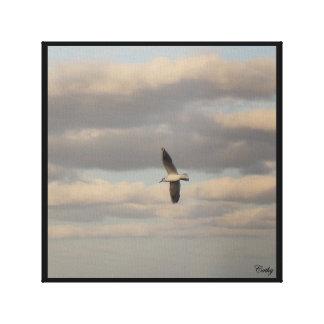 The gull canvas print