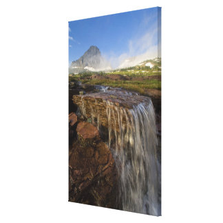 The Hanging Gardens at Logan Pass in Glacier Gallery Wrap Canvas