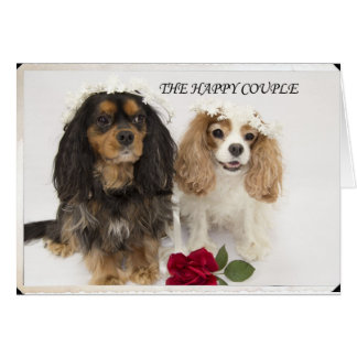 The Happy Couple Cavalier King Charles Spaniel Greeting Card