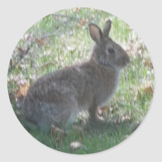 The Happy Rabbit Classic Round Sticker