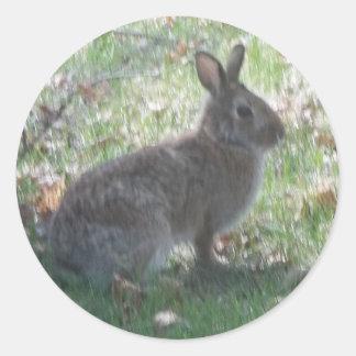 The Happy Rabbit Round Sticker