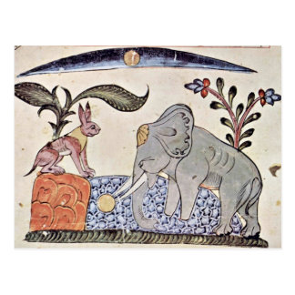 The Hare And The Elephant King In Front Of The Mir Postcard